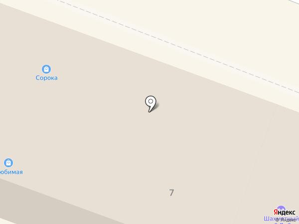 Сорока на карте Гатчины