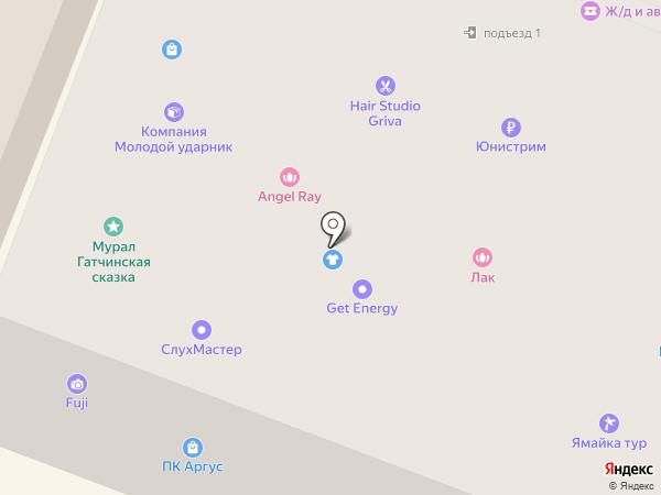 RepairSPb на карте Гатчины