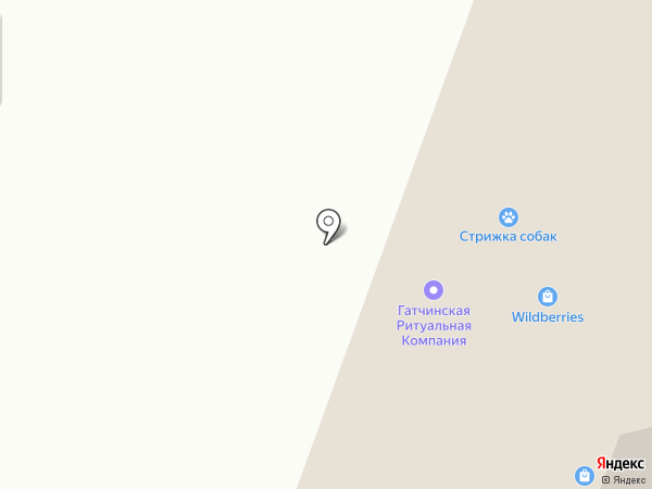 Мальвенок на карте Гатчины