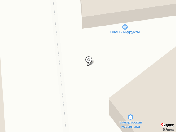 Магазин бытовой химии и косметики на карте Нового Девяткино
