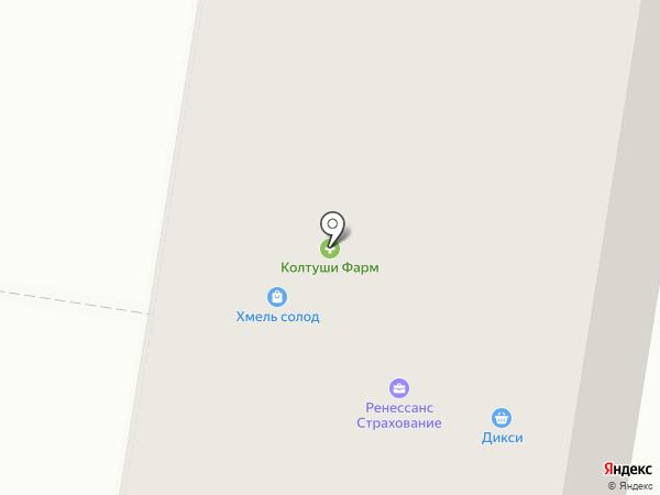 Колтуши Фарм на карте Янино 1