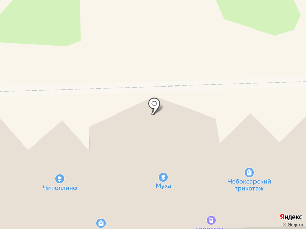 Муха на карте Никольского
