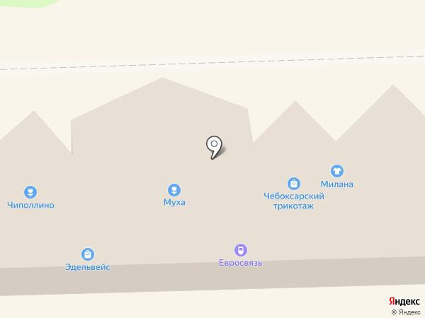 Магазин зоотоваров на Школьной (Тосненский район) на карте Никольского