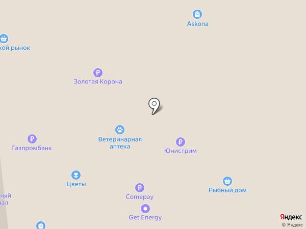 Хома на карте Кировска
