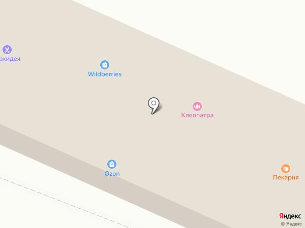 Магазин цветов на Молодёжной на карте Кировска