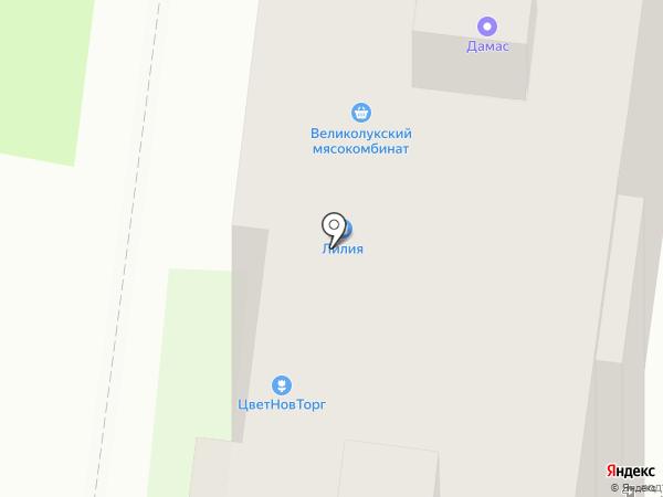 Вираж на карте Великого Новгорода