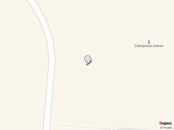 Инсайт на карте Мурманска