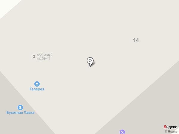 NetSL на карте Мурманска