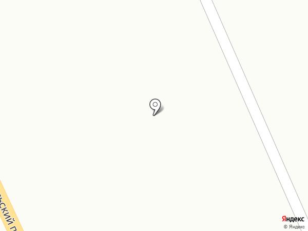 Винни пух на карте Мурманска