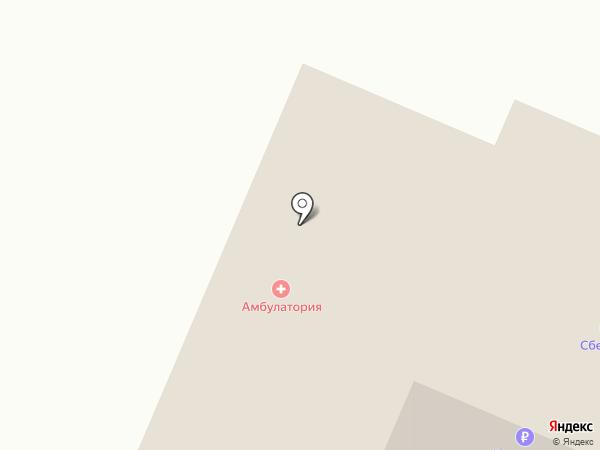 Врачебная амбулатория на карте Мичуринского