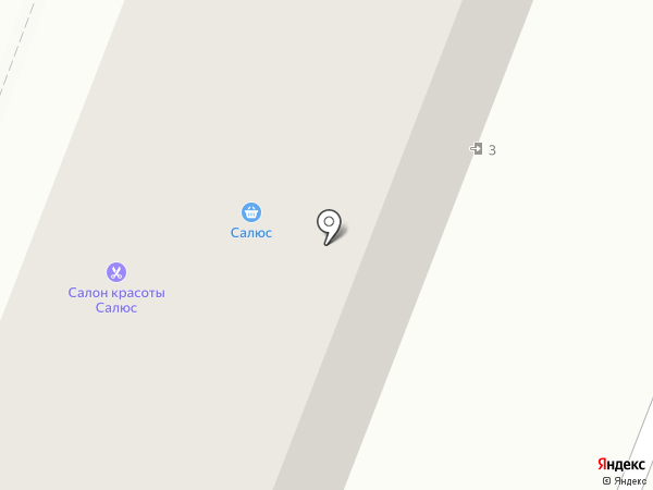 Салюс на карте Брянска