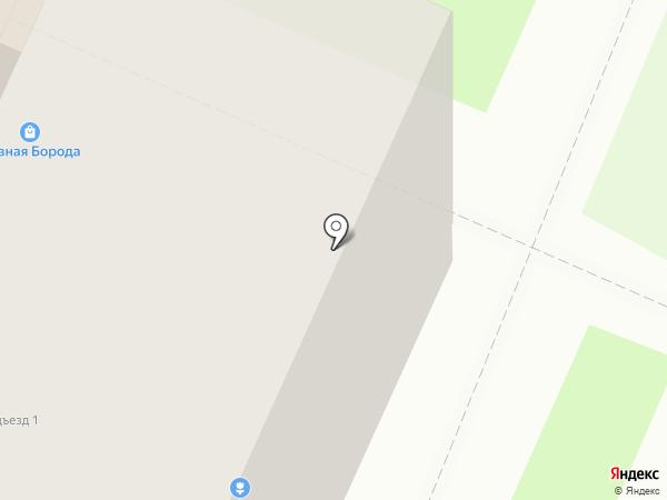 Волшебница на карте Брянска