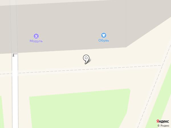 Модуль на карте Брянска