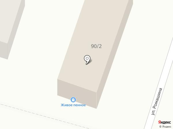 Свой мир на карте Брянска