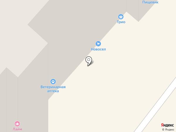 Ветеринарная аптека на карте Брянска