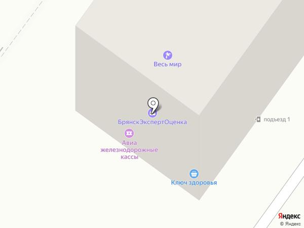 Весь мир на карте Брянска