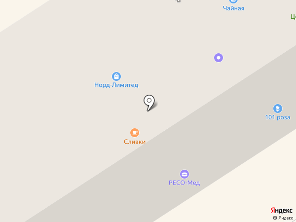 Компьютерная помощь на карте Петрозаводска