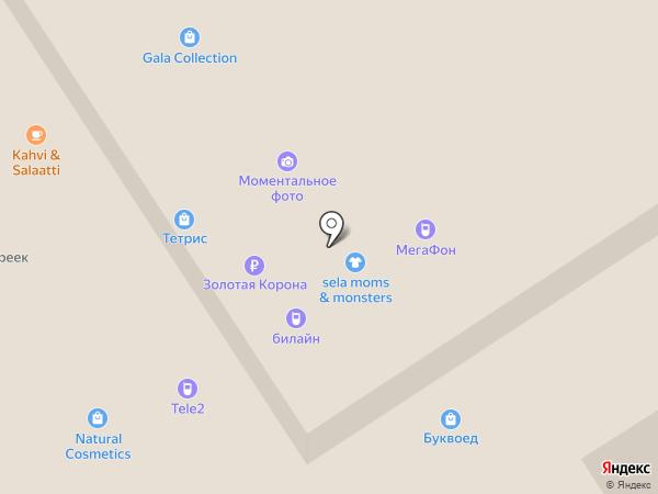 ZOOM на карте Петрозаводска