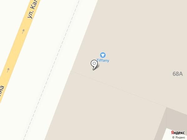 Пантера на карте Брянска