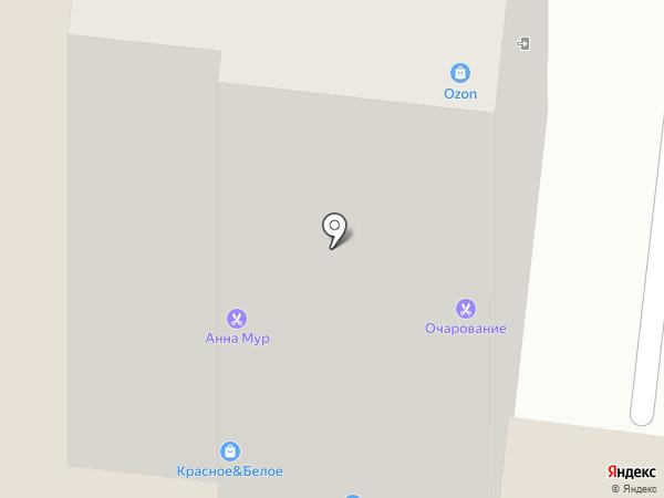 Анастасия на карте Брянска