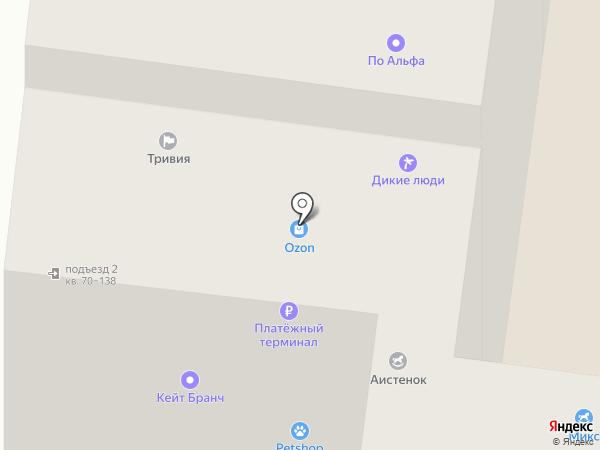 Автолайн на карте Петрозаводска