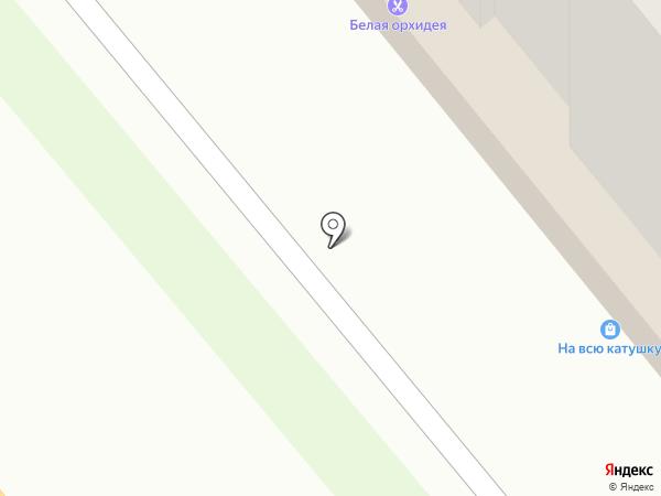 Белая орхидея на карте Брянска