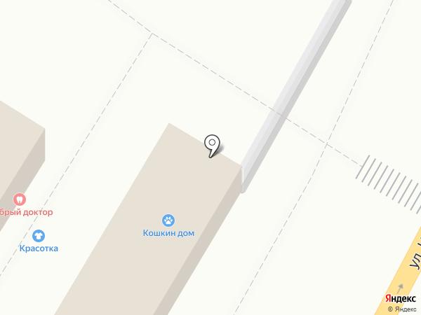 Автотема на карте Брянска