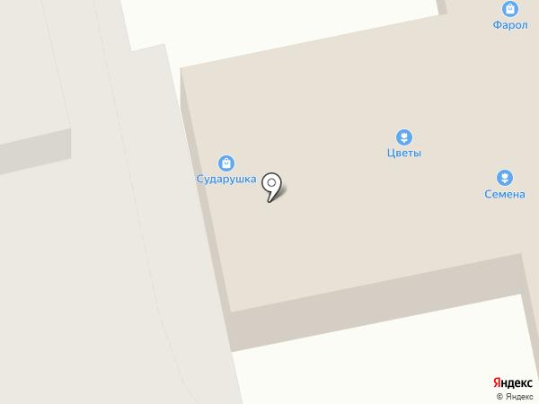 Сударушка, супермаркет бытовой химии на карте Брянска