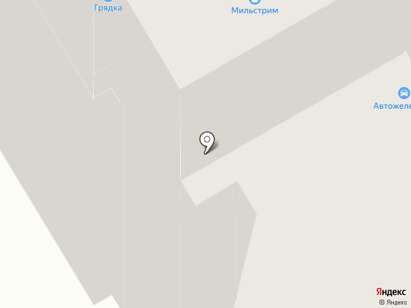 Бегемотик на карте Брянска
