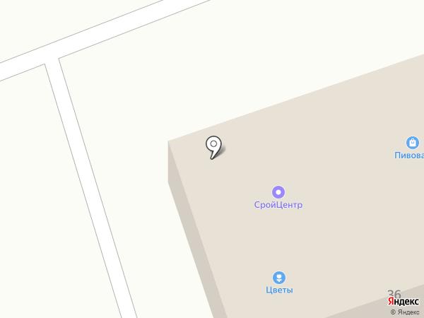 Берёзка на карте има. Льва Толстого