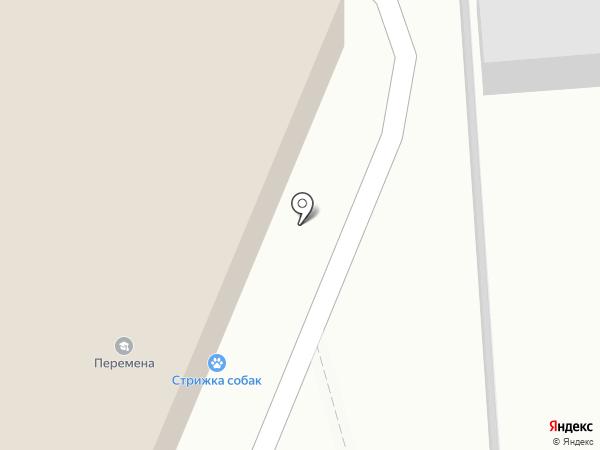 MAX на карте Курска