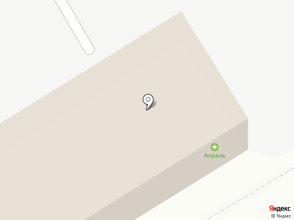 Династия на карте Курска