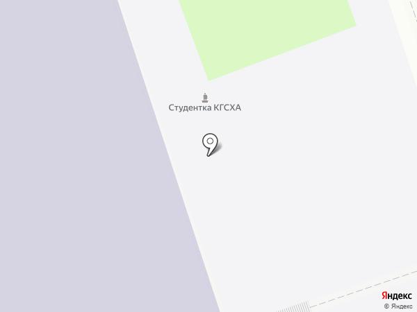 Курская государственная сельскохозяйственная академия им. И.И. Иванова на карте Курска