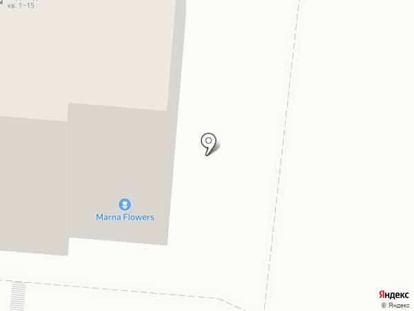 Бигуди на карте Курска
