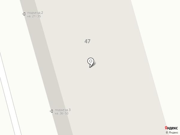Пальма на карте Калуги