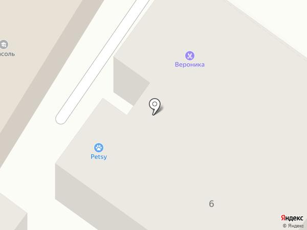 Вероника на карте Калуги
