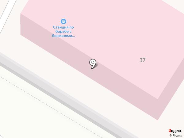Калужская городская ветеринарная станция на карте Калуги