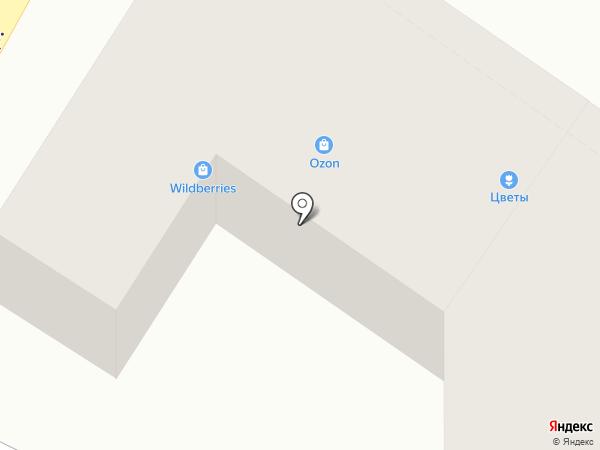 ZooСити на карте Калуги