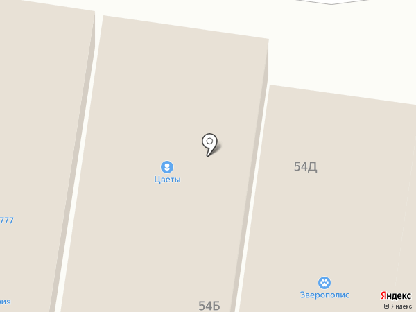 Клеопатра на карте Стрелецкого