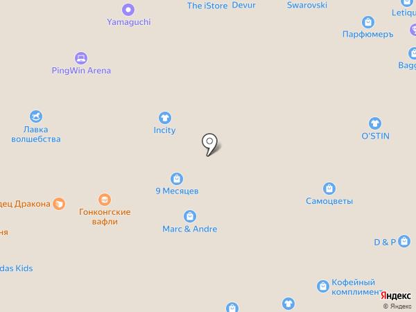 Стардог!s на карте Белгорода