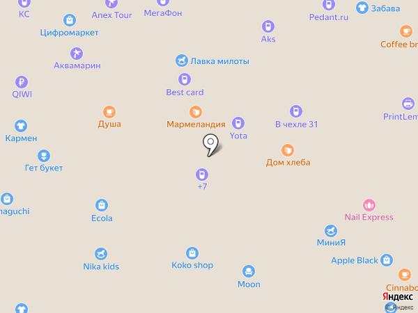 Taller на карте Белгорода
