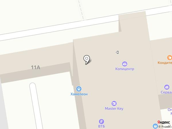 Хамелеон на карте Белгорода