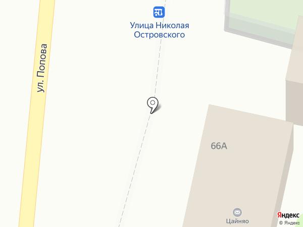 Цветы на Островского на карте Белгорода