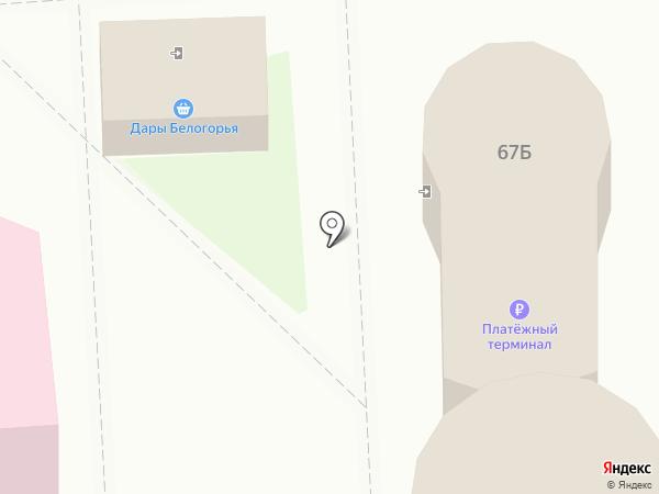 Цифровой сервис на карте Белгорода