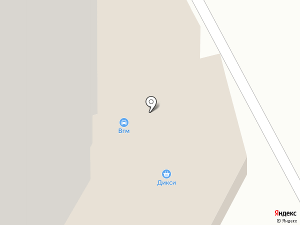 Дикси на карте Звенигорода