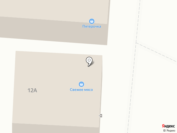 Элекснет на карте Власихи