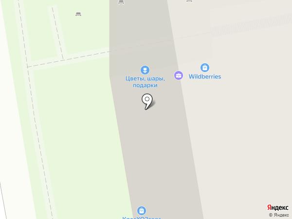 Чемпионика на карте Красногорска