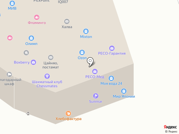 Пеликан на карте Одинцово