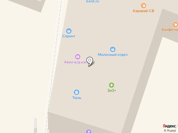 Избёнка на карте Химок