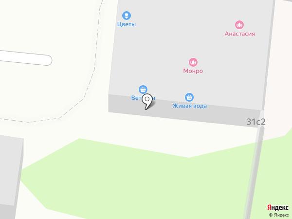 Монро на карте Химок